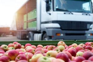 Fruit and food distribution.