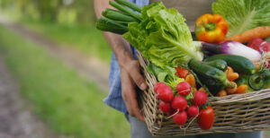 Basket with vegetables (cabbage, carrots, cucumbers, radish and peppers) in the hands of a farmer