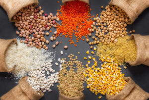 White beans, lentils, bulgur, chickpeas, kidney beans, corns, rice, in burlap sack Mix organic legume