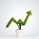 small pot of plant shaped like growing business revenues arrow